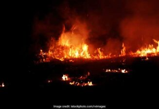 Fire Breaks Out At Furniture Market In Delhi, 8 Rescued