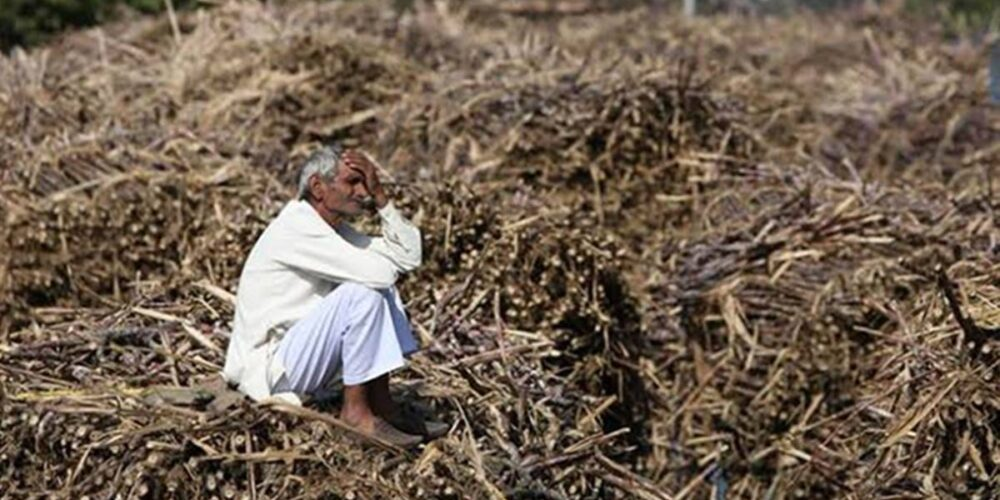 141 farmers have committed suicide over 10-month period till Feb 1, Chhattisgarh govt informs House